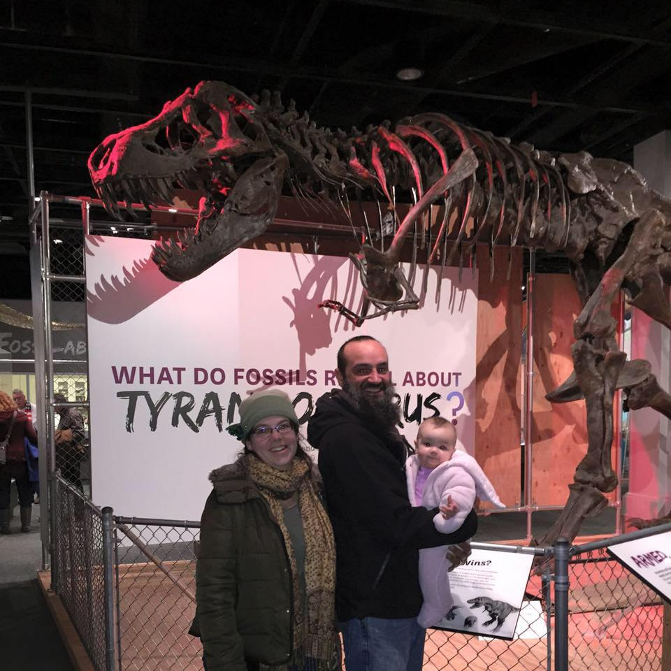 T-Rex at the Smithsonian Museum of Natural History